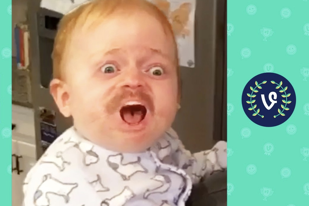 Video: Vines that will make your day! Funny Videos Vines