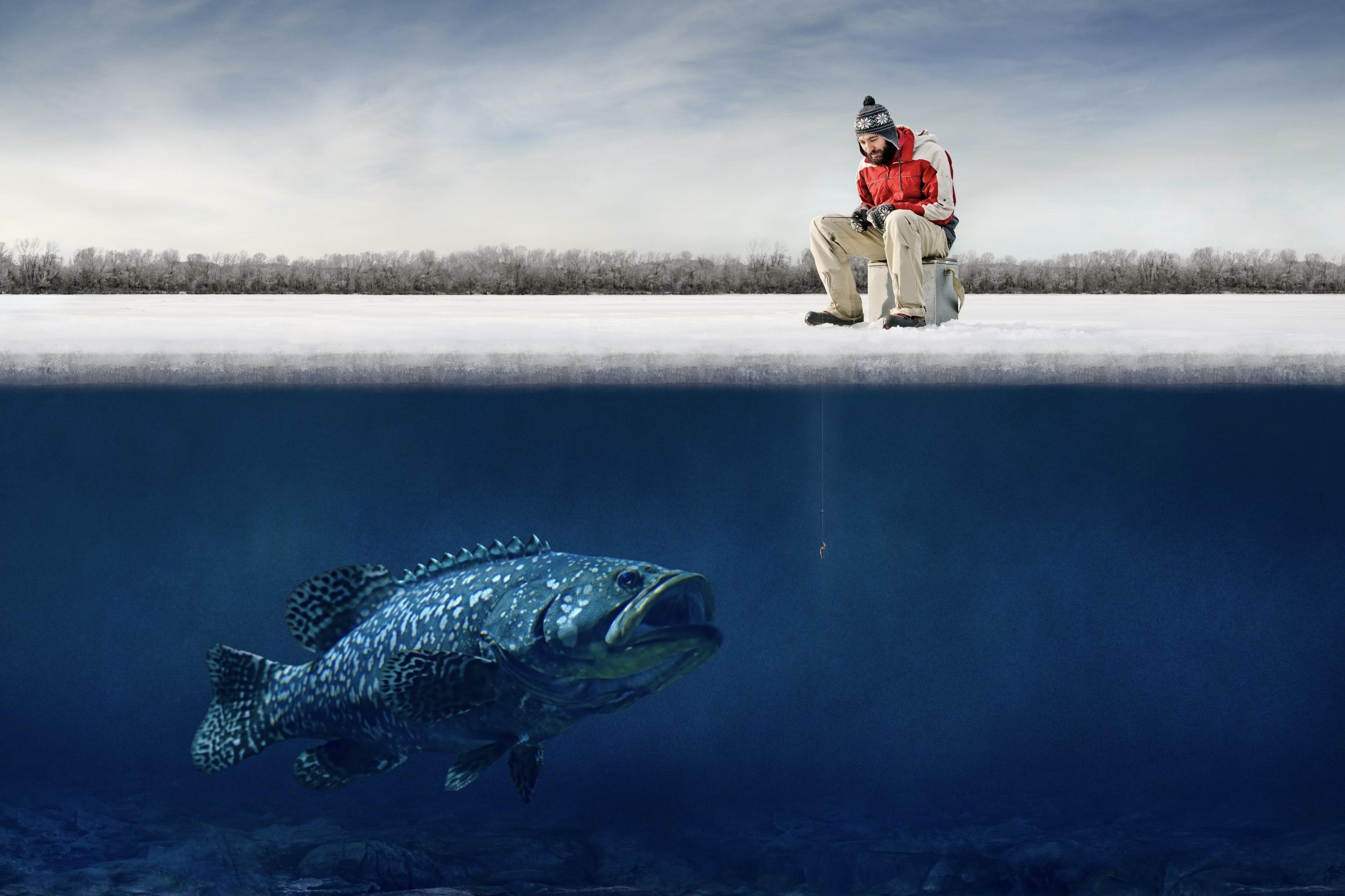 Fishing Challengesharksdude Perfect Fishingfishingdeep Sea Fishingdude