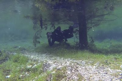 Video: Stunning Underwater Park In Spring!!