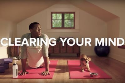 Video: Getting Ready For The Day With Your Dog