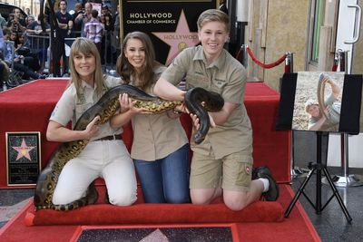 Video: Steve Irwin Will Live On The Hollywood Walk Of Fame