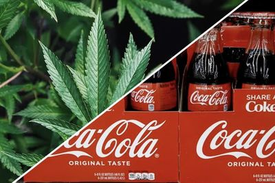 Wiz Khalifa Speaks Out On Cannabis Infused Coca Cola While Signing Autographs