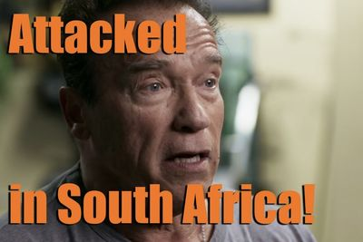 Arnold Schwarzenegger Responds After Being Attacked