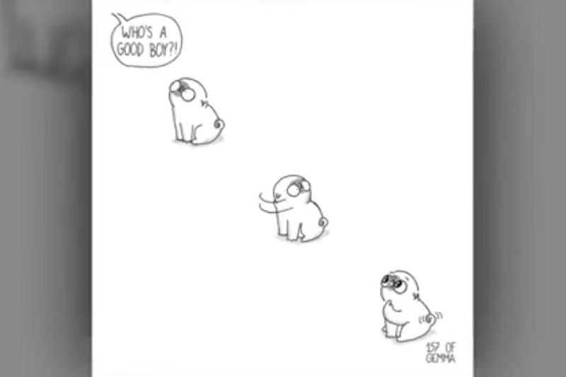 Video: Adorable And Hilarious Comics Summing Up Life With A Dog! 1