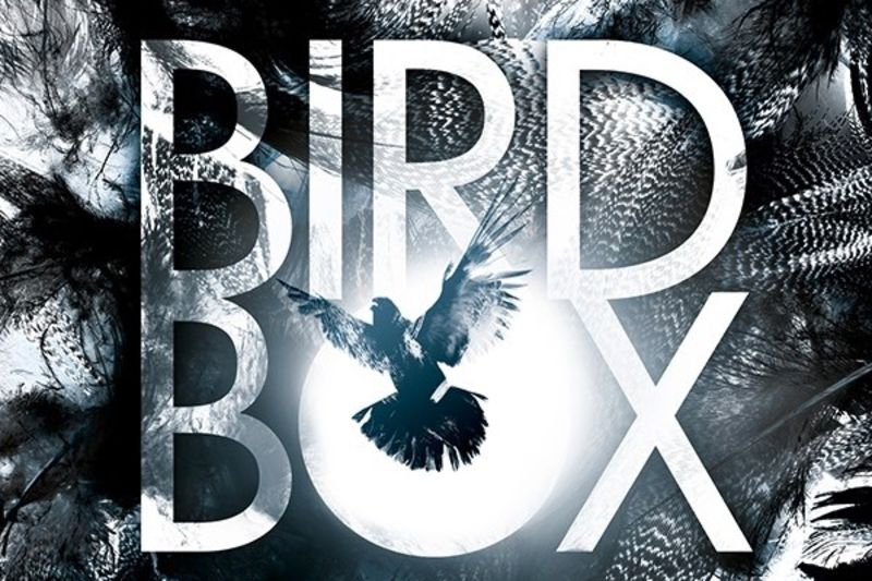 Upcoming 2018 Movie | Bird Box 1