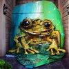 Street Artist Turns Rubbish into Street Art – Meet Bordalo II 5