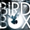 Upcoming-2018-Movie--Bird-Box